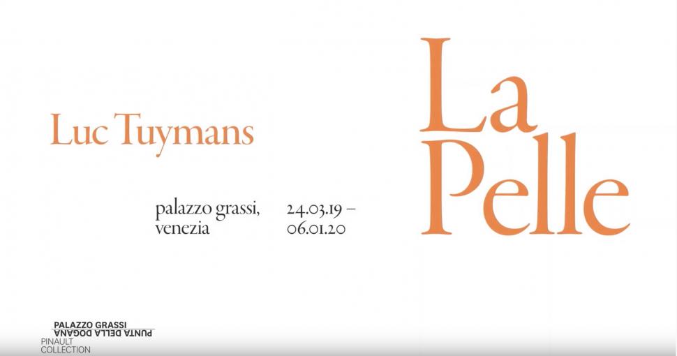 Video Art Conversation La Pelle Palazzo Grassi