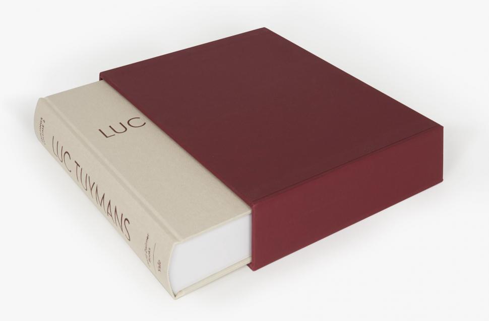Luc Tuymans Catalogue Raisonné of Paintings